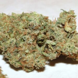 Buy Blueberry kush